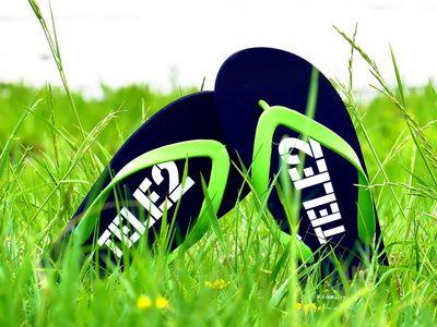 сланцы в траве